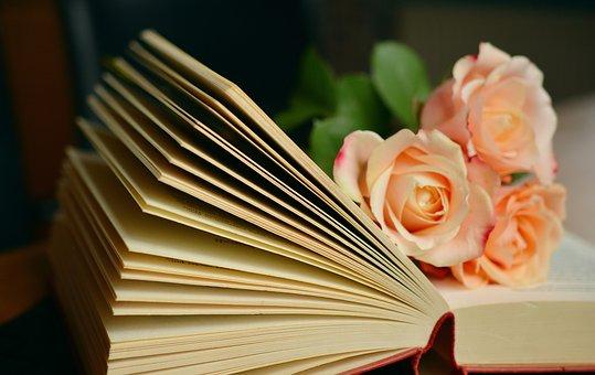book-1769228__340