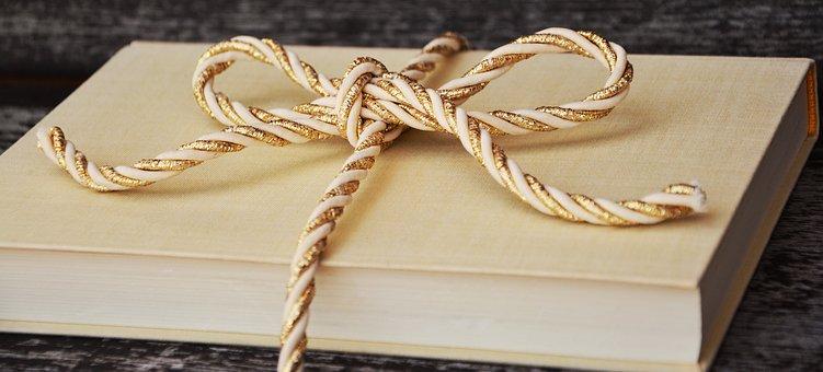book-1667826__340