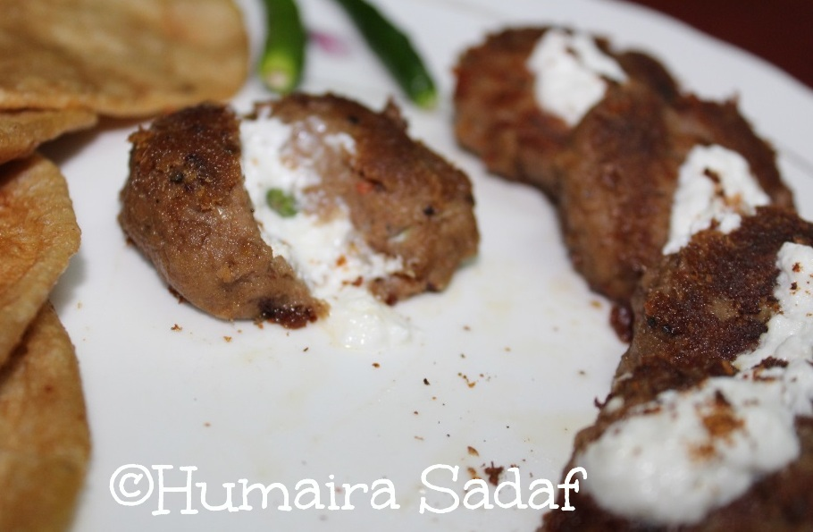 HYDERABADI SHIKAMPURI KEBAB WITH SOFT AND PUFFY POORI